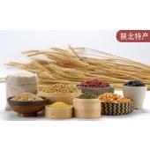 燕麦粉(炒面)
