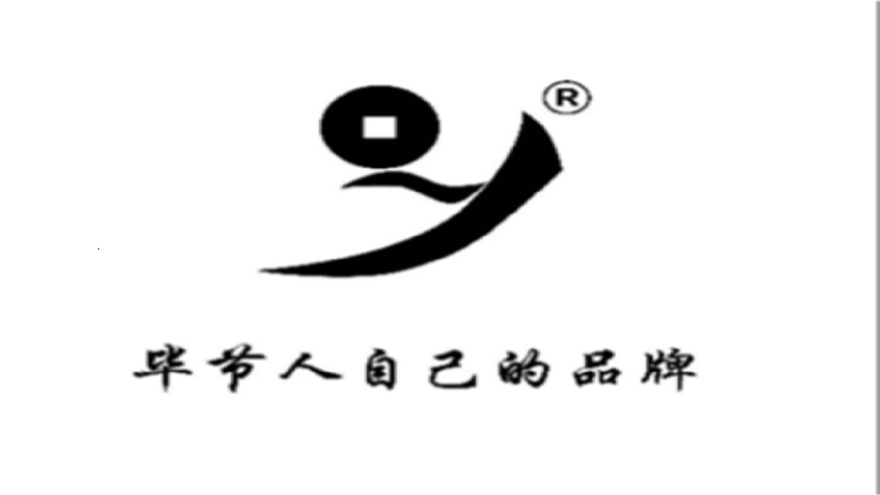 贵州省毕节市夜郎王鞋业有限公司