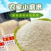 东北大米,胚芽粥米