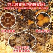 浙江老字号蜂御医  高山土蜂蜜