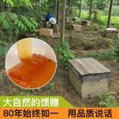 浙江老字号蜂御医  多种花蜂蜜