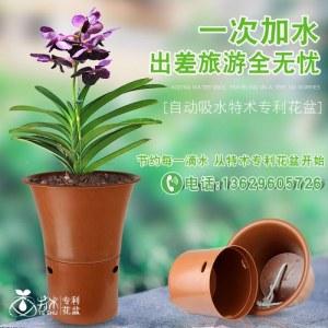 特术专利花盆(土红色)