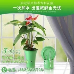 特术专利花盆(浅绿)