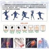 【3盒装】藏王奇草医用冷敷贴
