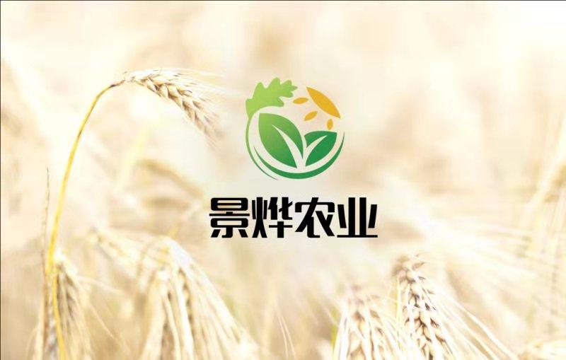 甘肃景烨现代农业科技有限公司