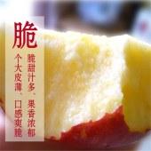 烟台沣林有机红富士苹果