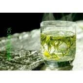 金口玉芽系列高山有机绿茶极品珍藏版