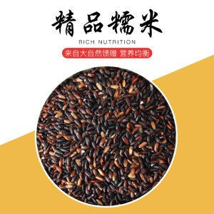 黑糯米 紫糯米 血糯米 黑香糯米 粽子米