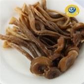 菌妙极品鹿茸菌