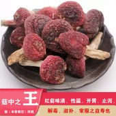 武夷山红菇(未开伞)