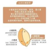 小麦胚芽片
