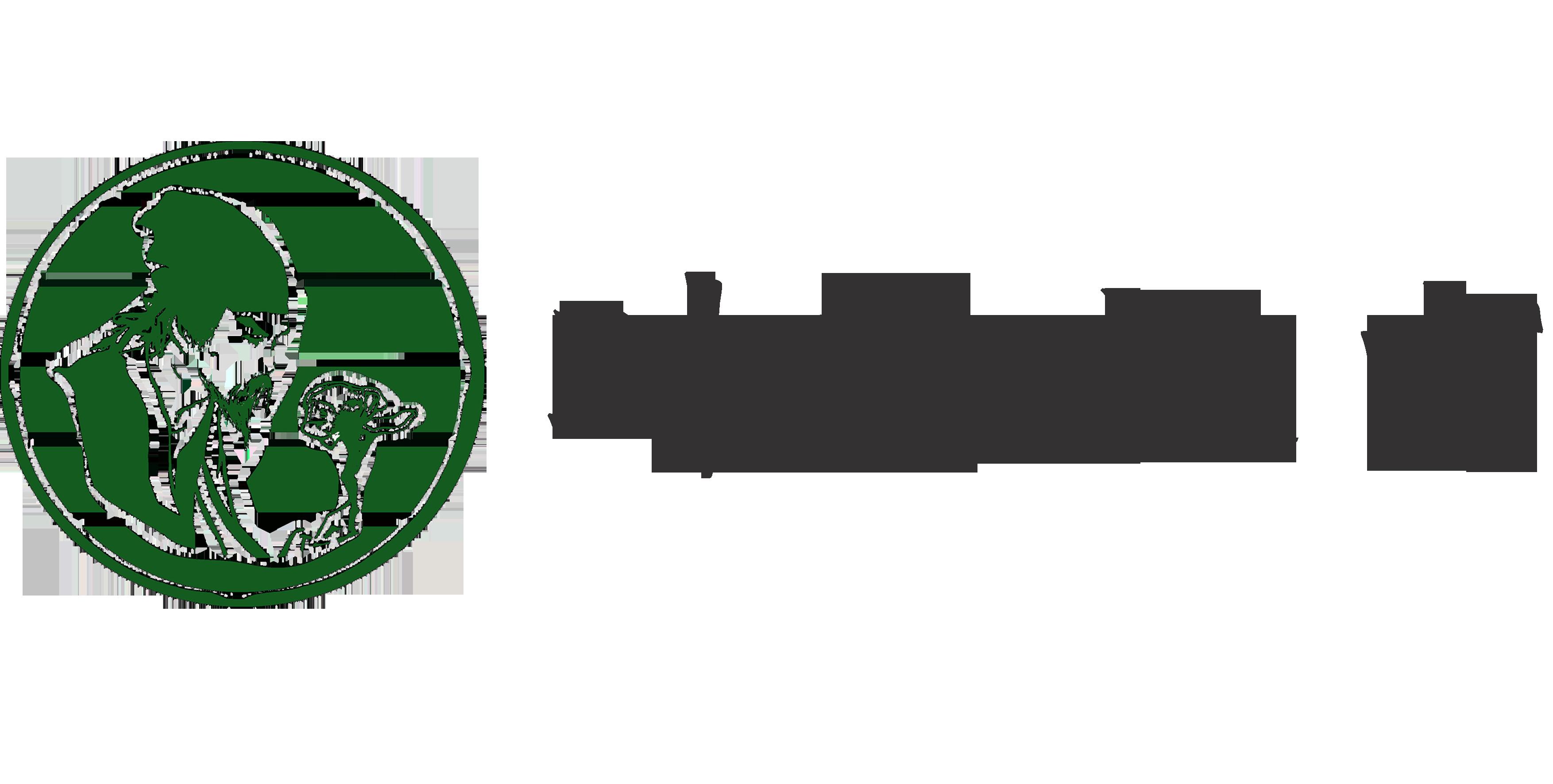 河南时珍汉方医药科技有限公司