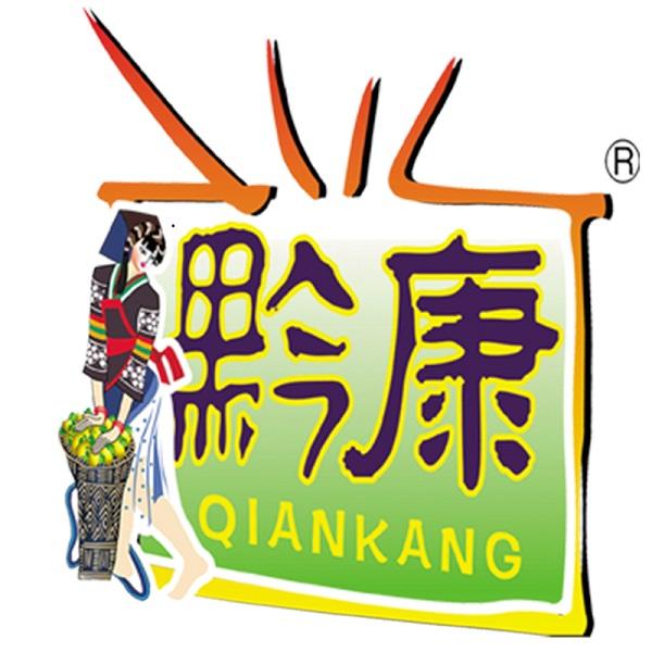 贵州黔宝食品有限公司