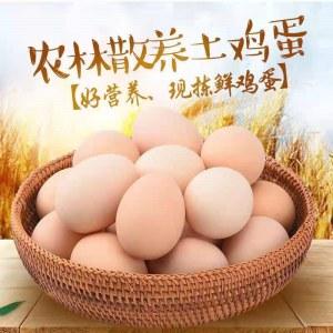 富硒鸡蛋,土鸡蛋