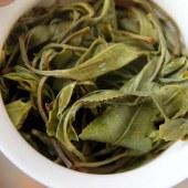 【曼英皓】勐海布朗山古树散茶生茶