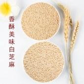 精炒熟白芝麻(490克×2瓶)